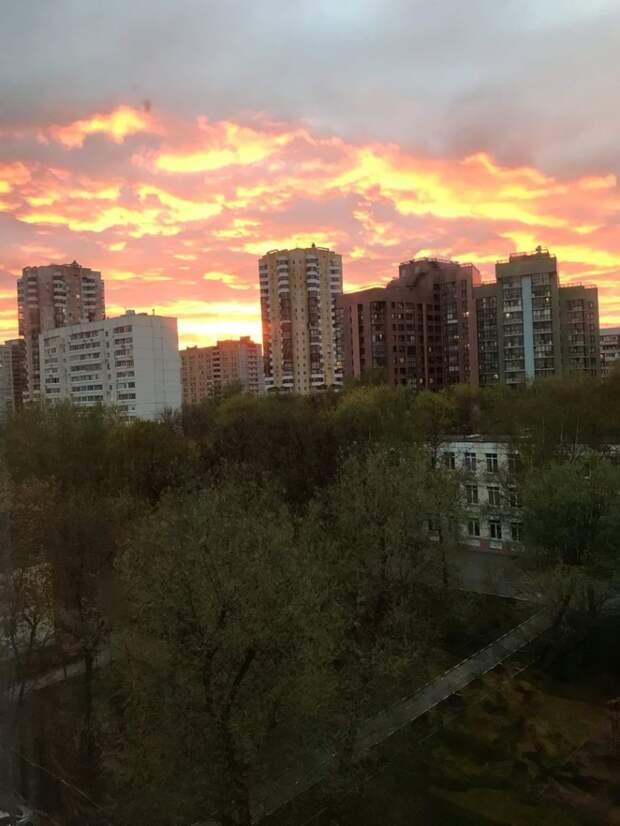 Фото: Алёна Кузнецова, Страница «Сидим дома в Тушино [Северном и Южном]» социальной сети «ВКонтакте»