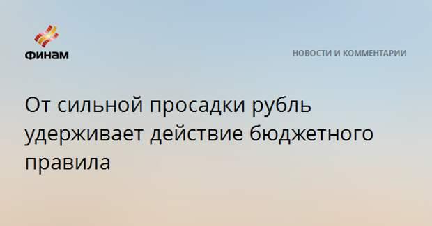 От сильной просадки рубль удерживает действие бюджетного правила