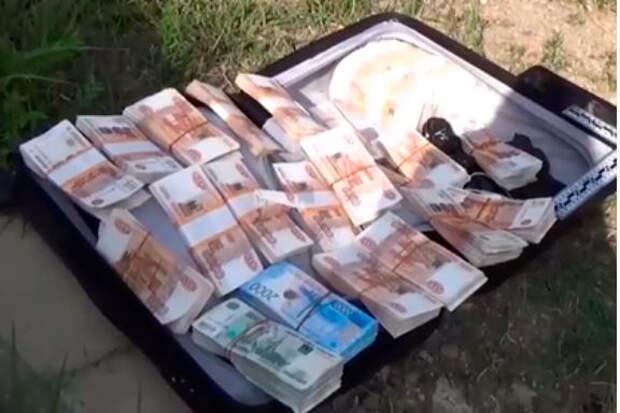 Россиянин забыл на улице чемодан с 15 миллионами рублей