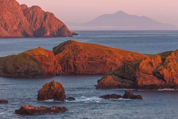 В Японии вновь возбудились по поводу принадлежности Курильских островов