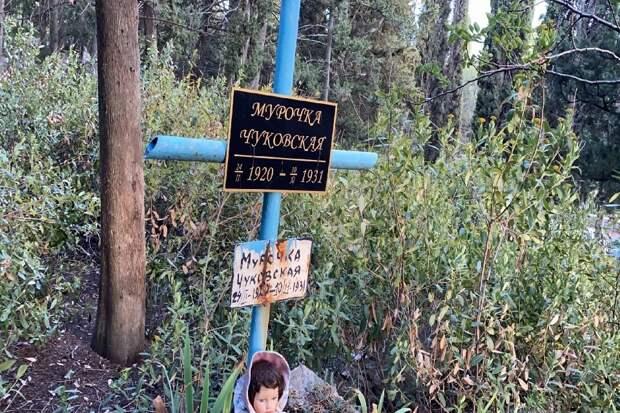 В Крыму обнаружили полностью заброшенную могилу дочери Корнея Чуковского