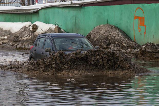 Novate.ru уверяет, скоро все высохнет... К маю где-то! | Фото: fishki.net.