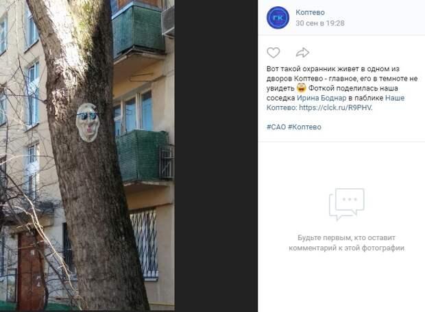Фото дня: необычный декор коптевского дерева