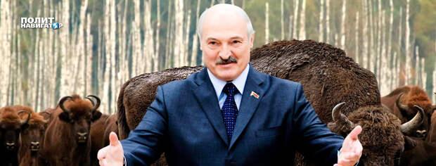 Новое обострение на Донбассе проявит истинную личину Лукашенко