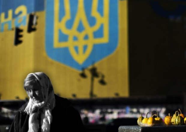 Николай Азаров: «Я просто поражаюсь, какие идиоты сейчас у руля Украины!»