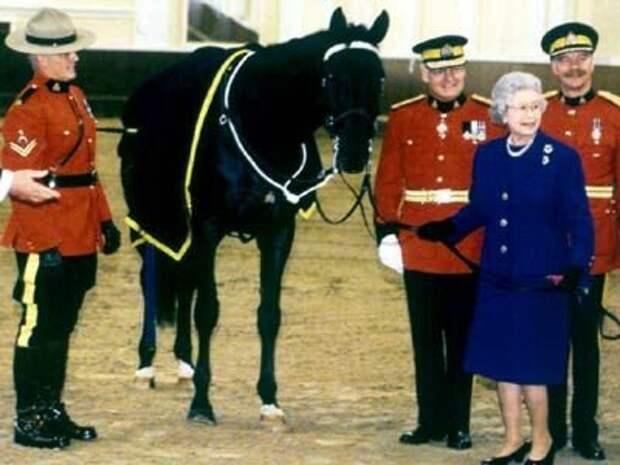 Королевская щедрость: какими подарками Хрущёв одарил королеву Елизавету