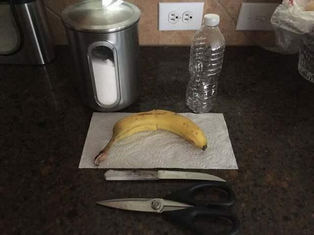 Итак, для сооружения ловушки нам понадобятся: пустая пластиковая бутылка, ножницы, нож, сахар, вода, банан бутылка, гениально, идея, ловушка, муха, сделай сам