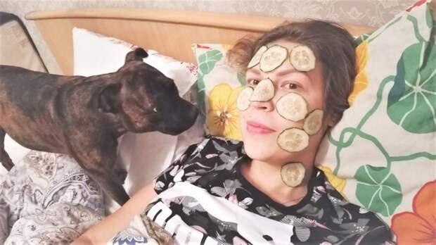 Смешные и милые собаки декабрь 2018. Костюм из пакетов и огуречная маска