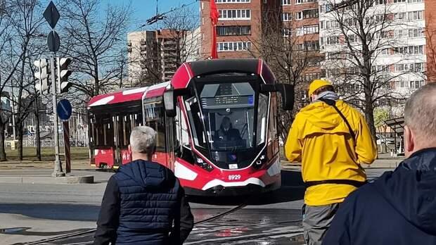 Новые модели трамваев появились на улицах Петербурга
