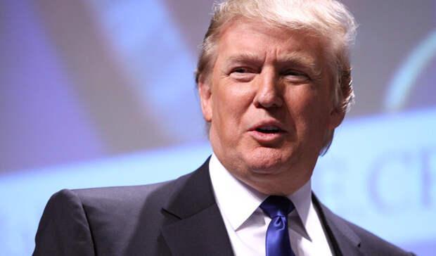 Политолог-американист озвучил возможные пути отстранения отвласти Дональда Трампа