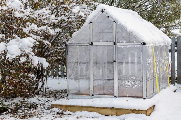 Лучше сделать с первыми снегами. /Фото: kioskplus.ru.