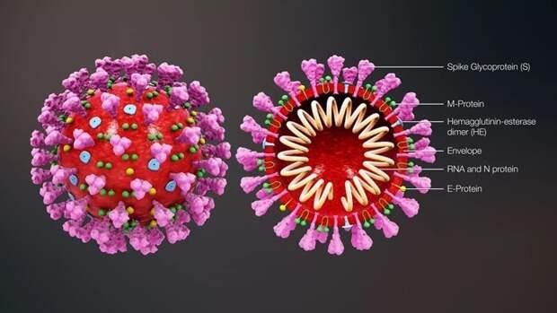 10 конспирологических теорий о коронавирусе