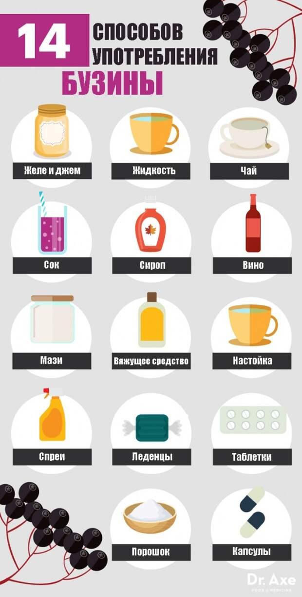 Черная бузина лечит грипп, простуду и даже рак! Вот 8 причин употреблять ее чаще