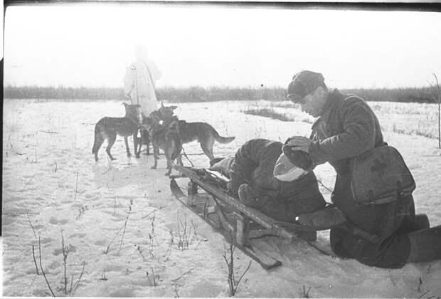 Сталинградская битва в фотографиях