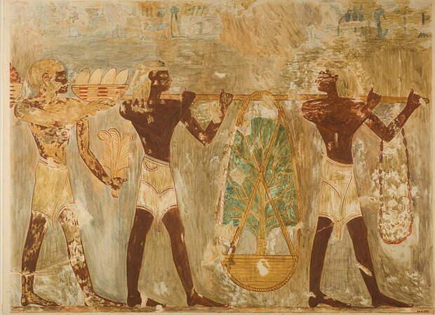 Последняя из известных экспедиций в страну Пунт состоялась при Рамзесе III