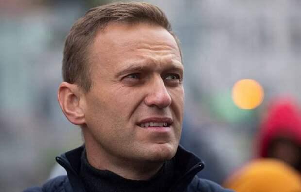 Кашин прокомментировал причастность Певчих к покушению на Навального