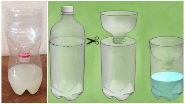 Как избавится от муравьев навсегда. Самые эффективные способы