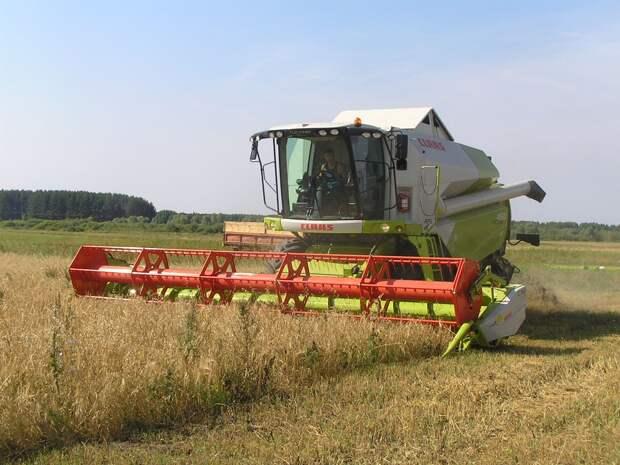 Аграрии Удмуртии на 95% выполнили план по засыпке зерновых культур