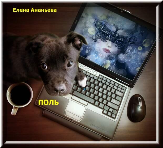 Поль....    Елена Ананьева