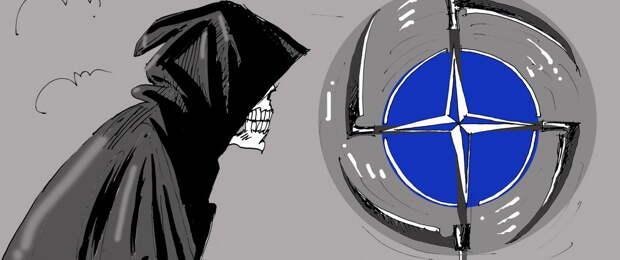Вторжение НАТО на Украину идет полным ходом