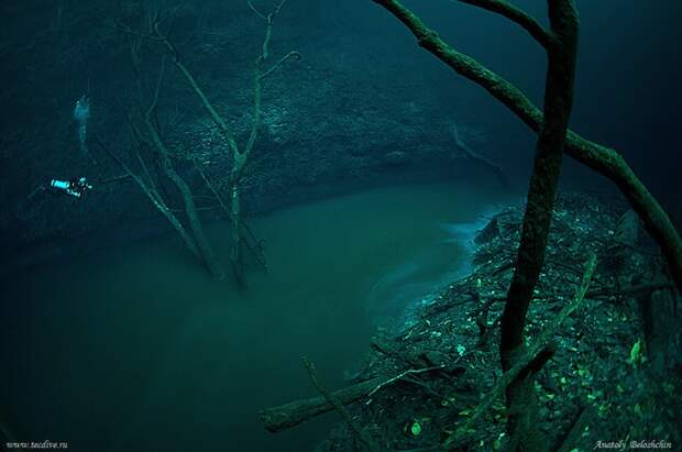Таинственная подводная река Анхелита в Мексике