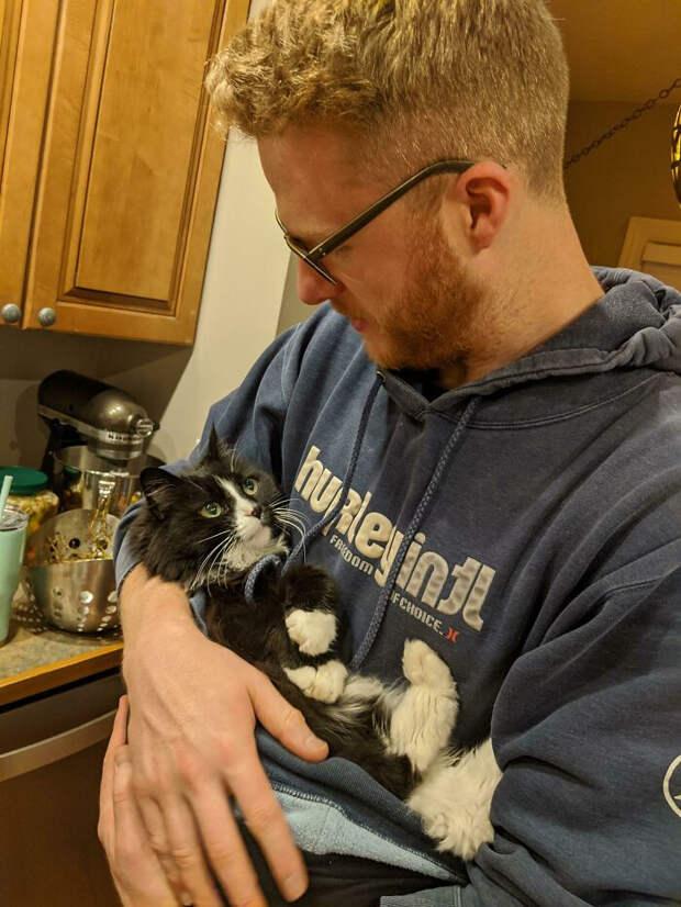 Домашние животные смотрят на своих хозяев с искренней любовью