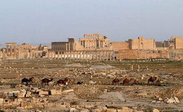 Топ 15 городов, канувших в небытие города, история, мир, цивилизация