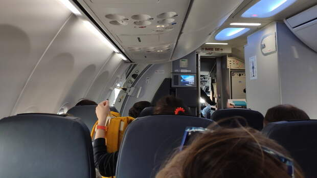 ВРостове назвали подробности экстренной посадки самолета изТурции
