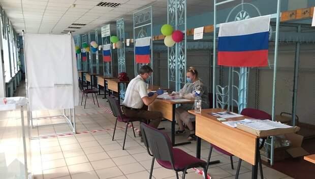Более 470 наблюдателей следят за ходом голосования по Конституции в Подольске