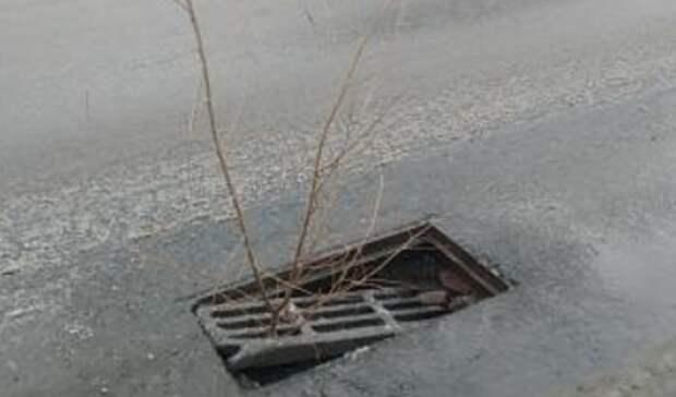 Коммунальщики игнорируют дыру на проезжей части ул. Салмышской Оренбурга