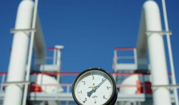 Почти на50% увеличила Германия закупки российского газа за10 дней февраля 2021
