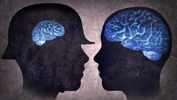 Татьяна Черниговская: 6 фактов о работе мозга