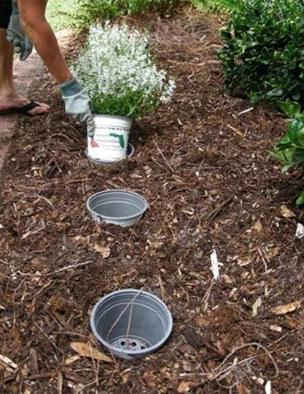 Советов, которые помогут упростить работу в саду