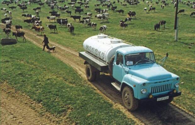 Загадка про молоко на примере фото из СССР