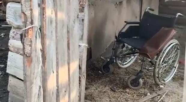 Видео с места, где мать держала орловскую девочку-маугли