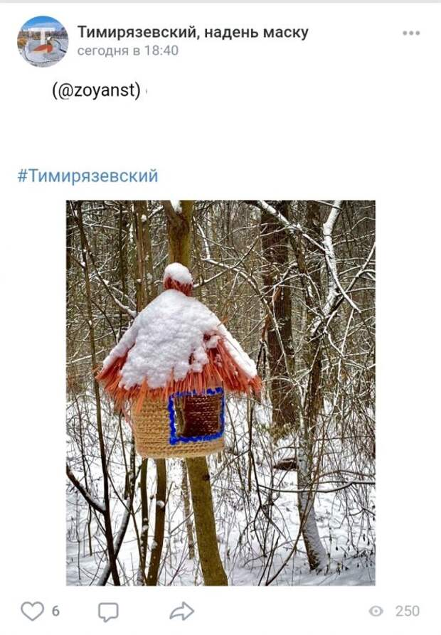 Фото дня: в Тимирязевском лесу обнаружили вязаную кормушку