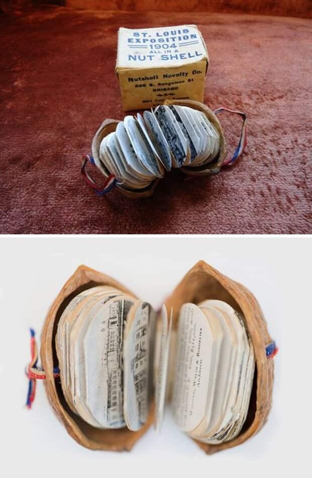 Щёлкаем орешки: скорлупа грецкого ореха как материал для вашего творчества, фото № 3