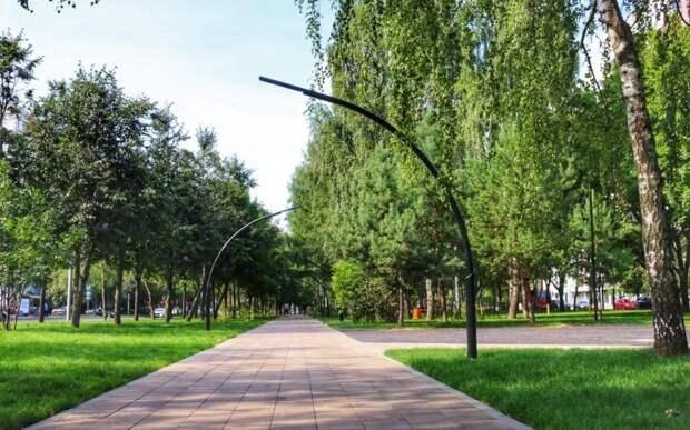 Более 800 деревьев высадили в сквере на Туристской