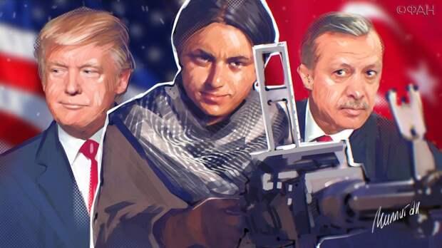 Эрдоган возобновит «Источник мира» из-за новых терактов курдских радикалов в Сирии