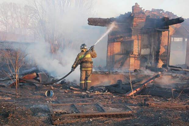 Житель Новосибирска случайно уничтожил 63 дачи