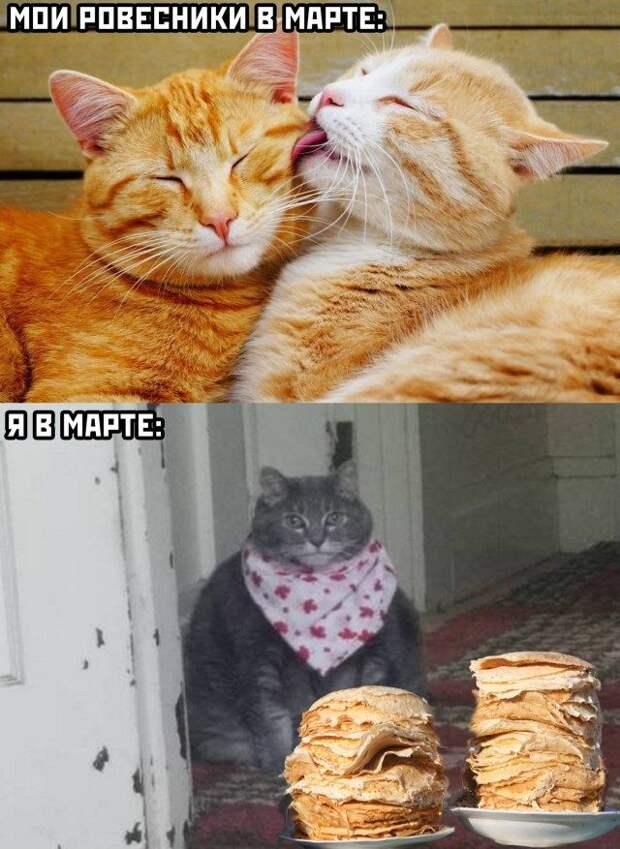 Прикольные картинки и мемы