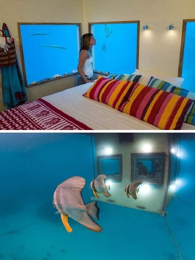 В номерах, которые находятся на нижнем уровне, можно любоваться подводным миром (Плавающий отель, Занзибар).