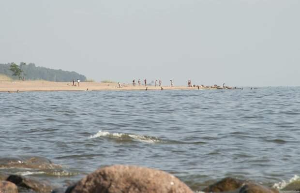 Петербуржцы спасли на пляже не подающую признаков жизни девочку