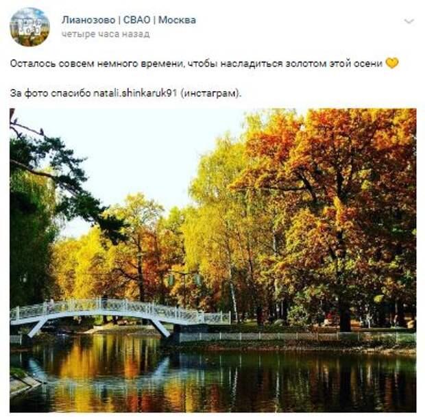 Фотокадр: Лианозовский парк пока ещё не снял свой «золотой наряд»