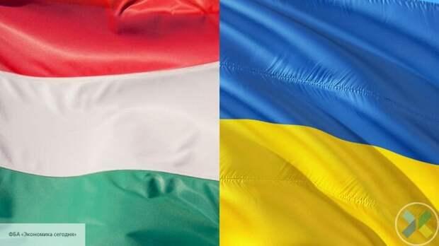 Посла Украины вызвали в МИД Венгрии после обысков у лидера венгерской общины Закарпатья