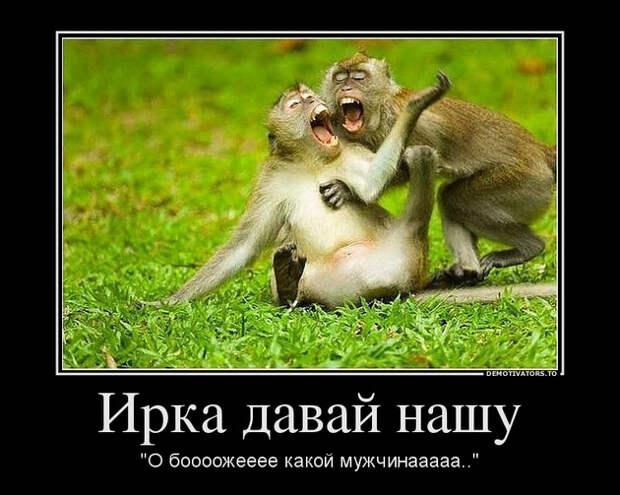 В зопарке: -Мама, это уже обезьяна? -Hет, это еще кассир..