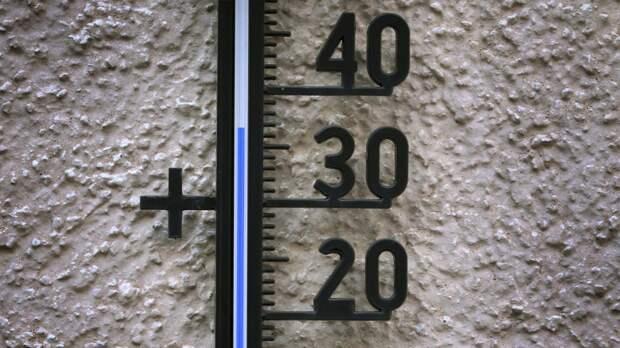 Синоптики объявили оранжевый уровень опасности в Москве из-за аномальной жары