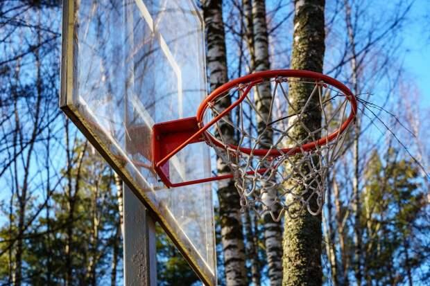 В парке Дубрава пройдет турнир по баскетболу
