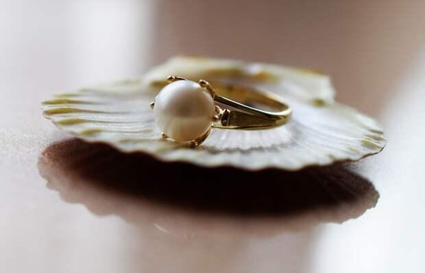 В Таиланде женщина купила морских улиток и нашла жемчужину