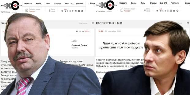 «Сын стратег, а папа тактик? Или как либералы Гудковы учат жить нас и белорусов»